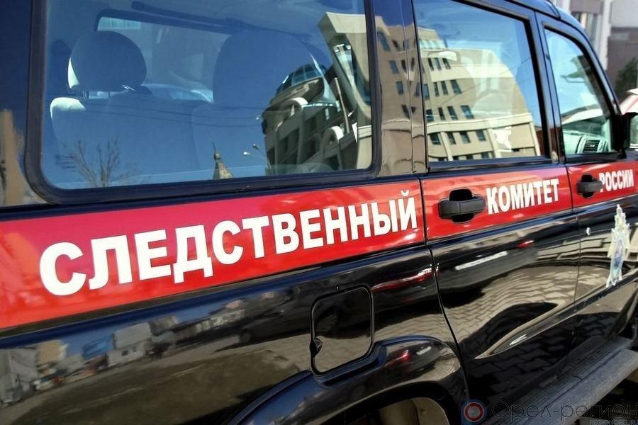 СК поведал подробности смерти Павла Плотникова