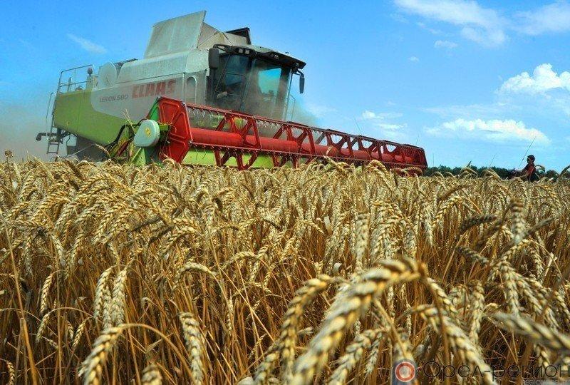 Минсельхоз: на5октября собрано 128 млн тонн зерна