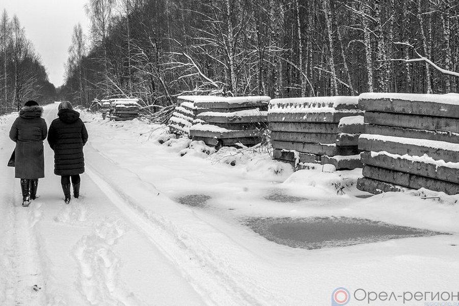ВОрловской области неизвестные разобрали 25 километров бетонной дороги