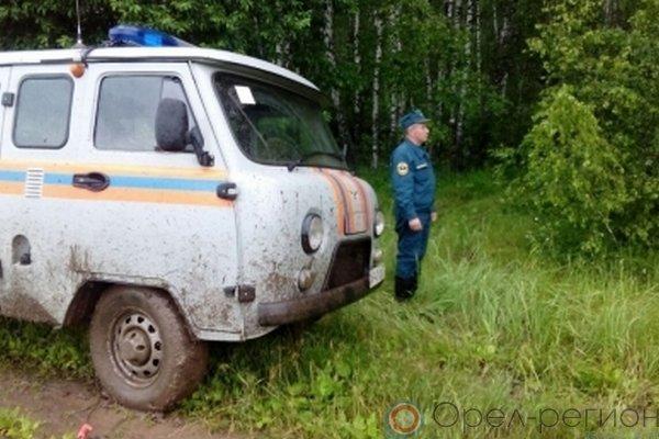 Брянские волонтёры помогли отыскать семью, пропавшую ворловском лесу